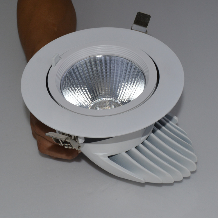 Guangdong taʻitaʻia le fale gaosi oloa,taʻitaʻia le malamalama,50w o le elemene na toe tosoina Led downlight 3, e_2, KARNAR INTERNATIONAL GROUP LTD