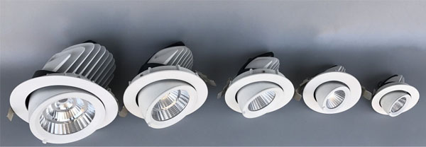 Guangdong taʻitaʻia le fale gaosi oloa,taʻitaʻia le malamalama,50w o le elemene na toe tosoina Led downlight 1, ee, KARNAR INTERNATIONAL GROUP LTD